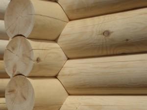 round-log-material-Венский-Дом-1